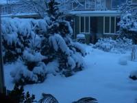 Highlight for Album: Winter 2005