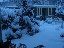 winter-3maart05-1