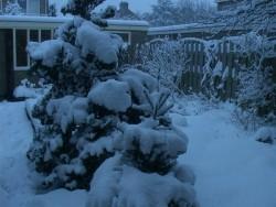winter-3maart05-3