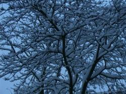 winter-3maart05-4
