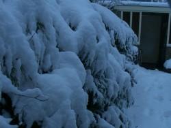 winter-3maart05-7