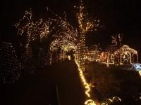 Highlight for Album: Kerst 2006 verlichting in Den Ilp